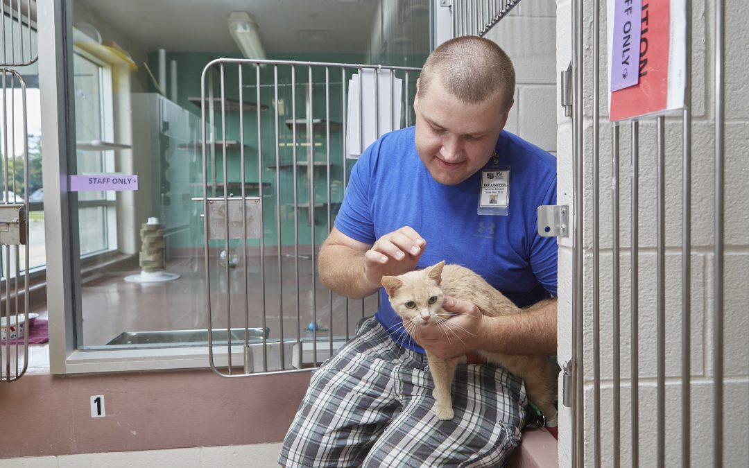 The Times of COVID are Changing and the Hamilton/Burlington SPCA is Getting Ready.