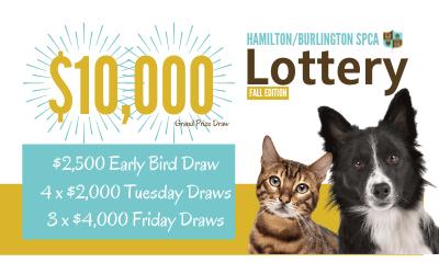 Fall Lottery Supports Hamilton/Burlington SPCA Companion Animal Hospital